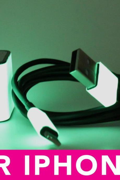 Glow in the Dark iPhone 5 Charger - 2-in-1 Glow in the Dark Black iPhone Charger - iPad Mini Charger - iPod Charger