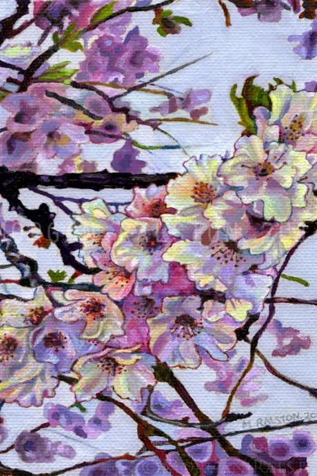 Giclee Canvas Print 8x10 - The Cherry Branch - Pink Purple Flower Signed Limited Edition