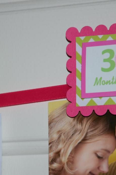 First Year Photo Clips, First Year Banner, Chevron Print, Hot Pink and Lime Green, Butterfly and Chevron Print Theme