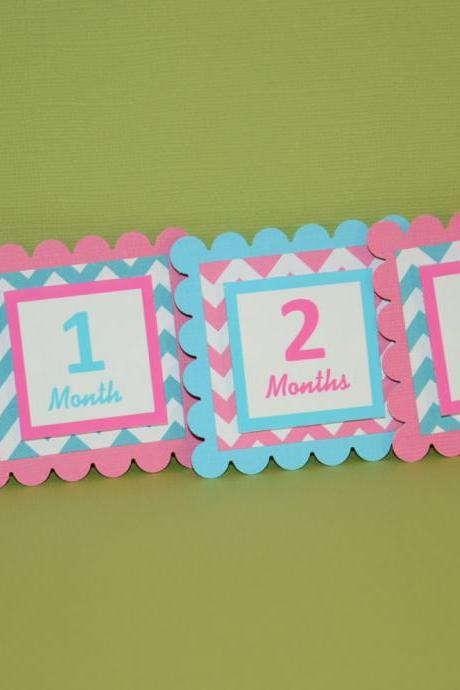First Year Photo Clips, First Year Banner, Chevron Print, Hot Pink and Turquoise Blue, Chevron Print Theme