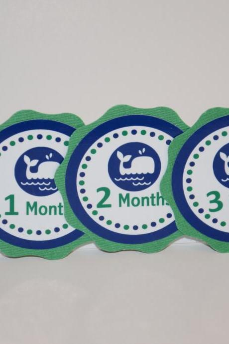 First Year Photo Clips, First Year Banner, Whale Birthday Party, Kelly Green and Navy Blue Colors