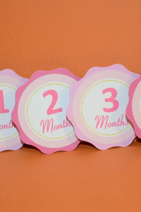 First Year Photo Small Clips, First Year Banner, Birthday Party, Hot pink and Pink Theme