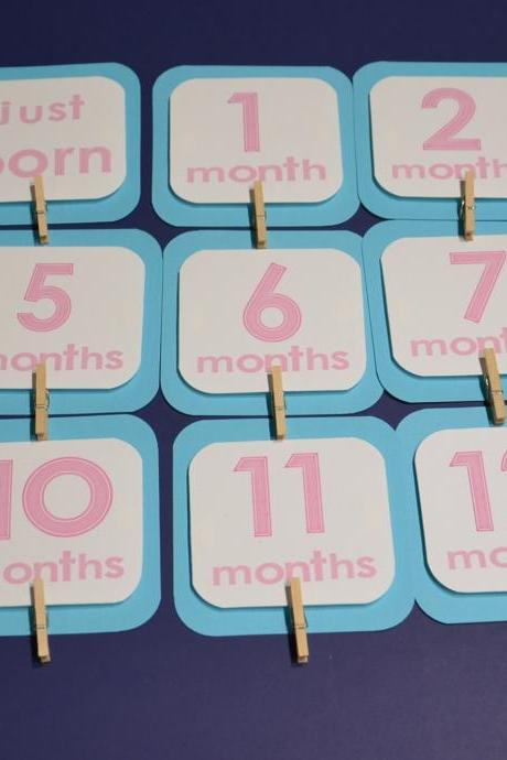 First Year Photo Mini Clips, First Year Banner, Bird Birthday Party, Any Theme, Turquoise and Pink