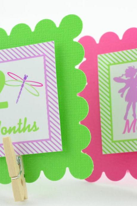First Year Photo Mini Clips, First Year Banner, Fairy and Dragonfly Theme, Garden Birthday Party, Any Theme