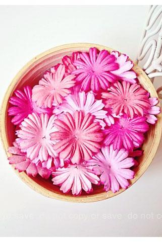 30 Mixed Pink Medium Daisy Flowers petal / pack