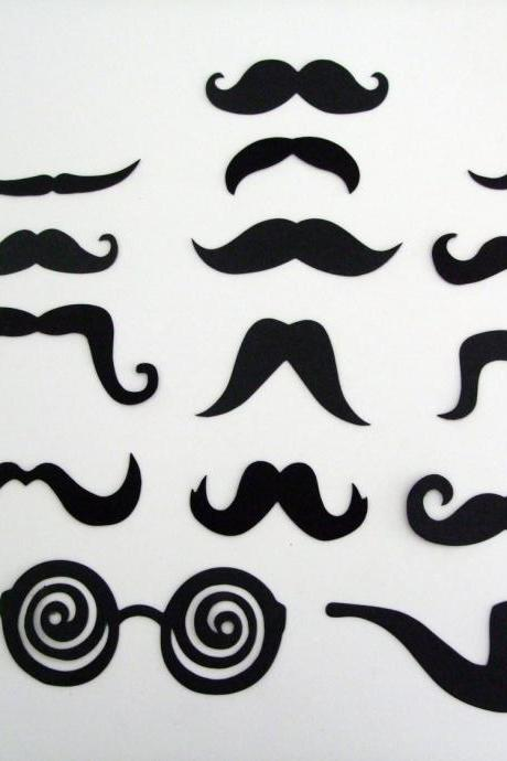 Moustache Set (15 pcs)