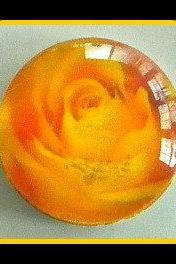 "Magnet - Yellow Rose - Meaning ""Friendship and New Beginnings"" - 1 Inch Glass Circle - Valentine's Day"