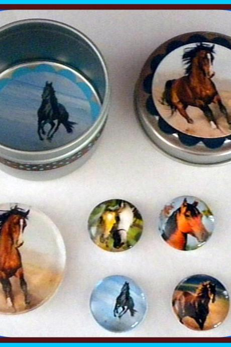 Magnets - Horses Magnet Set in Gift Tin - 5 magnets