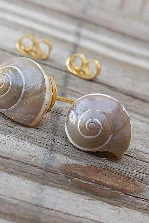 Seashell Stud Earrings - Tiny Grey Seashells - Nautical Earrings - Handmade Jewelry