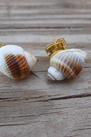 Seashell Stud Earrings - Tiny Brown and White Seashells - Nautical Earrings - Handmade Jewelry