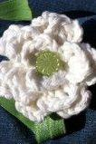 Crochet Flower Headband White and Green
