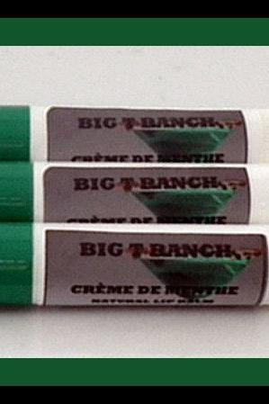 LIP BALM - SALE - All Natural - Creme de Menthe - Lip Gloss - Lipstick