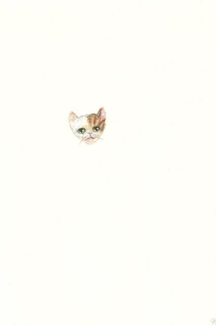 Original kitty colored pencil drawing OOAK tabby
