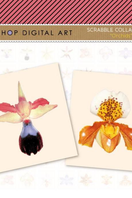 Scrabble Digital Collage Sheet - Orchids