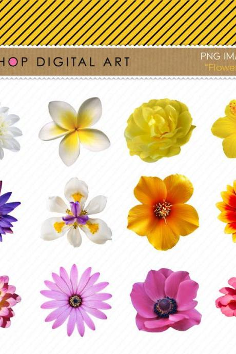 Flowers Clipart - Flowers Images - Digital Collage Sheet - Flowers II - INSTANT DOWNLOAD - Buy Any 2 Packs Get 1 Free
