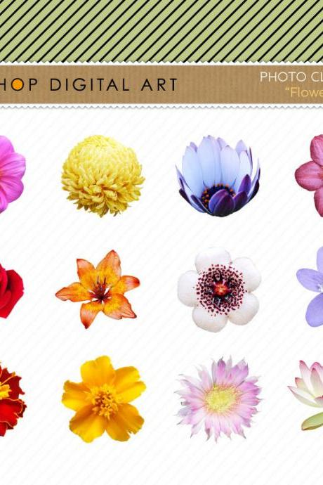 Flowers Clip Art - Flowers Images - Digital Collage Sheet - INSTANT DOWNLOAD - Buy Any 2 Packs Get 1 Free