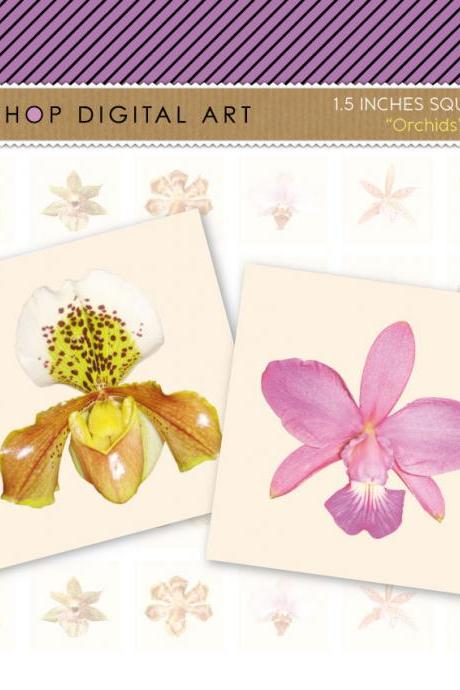 1.5' Digital Collage Sheet Squares - Orchids Flowers- INSTANT DOWNLOAD - Buy Any 2 Packs Get 1 Free