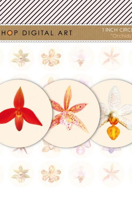 1' Digital Collage Sheet Circles - Orchids Flowers - INSTANT DOWNLOAD - Buy Any 2 Packs Get 1 Free
