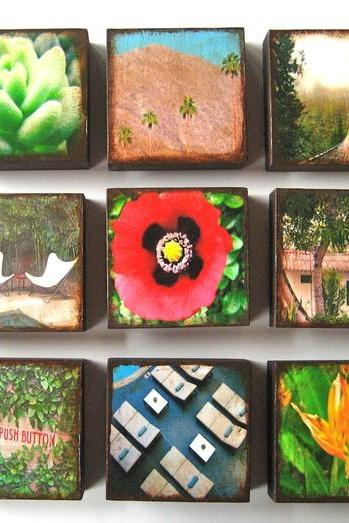 4x4 Photo Block Trio Choose Three 3 Mix and Match Art Photography Wood Block Red Green Blue nature landscape flower garden red t