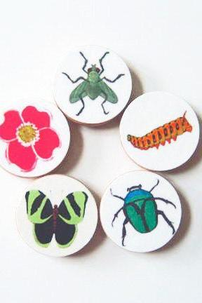 Five Magnets Bugs Butterflies and Blooms 1.5 inch round Green Orange Blue Pink Insects Flowers Red tile studio