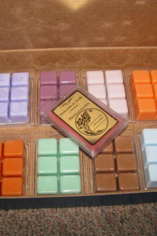 3ea Clamshell Highly Scented Candle Tarts Wax Melt EXCLUSIVE Fragrances Not Available Anywhere