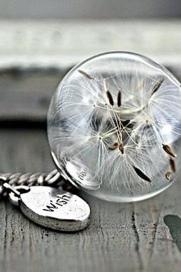 he manual wish silver necklace with real dandelion glass ball wishing bottles Long Necklace sweater chain