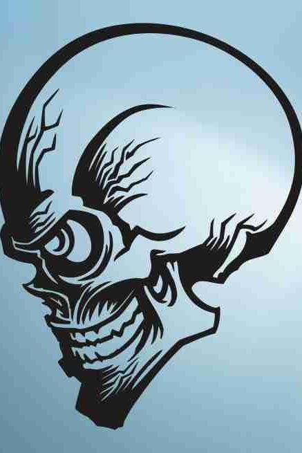 Skull Version 118 Bones Wall Vinyl Decal Sticker Art Graphic Sticker Skulls