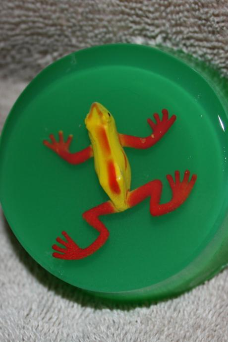 Frog-in-a-Pond Soap