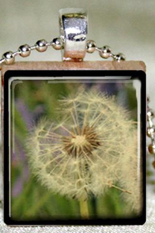 Dandelion Scrabble Pendant with Necklace and Matching Gift Tin