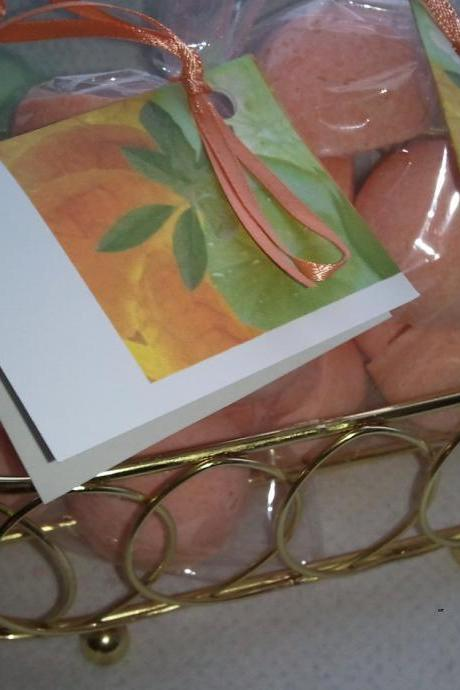 12 bath bombs 1 oz each (Mandarin, Basil, Lime) gift bag bath fizzies, great for dry skin, shea, cocoa, 7 ultra rich oils