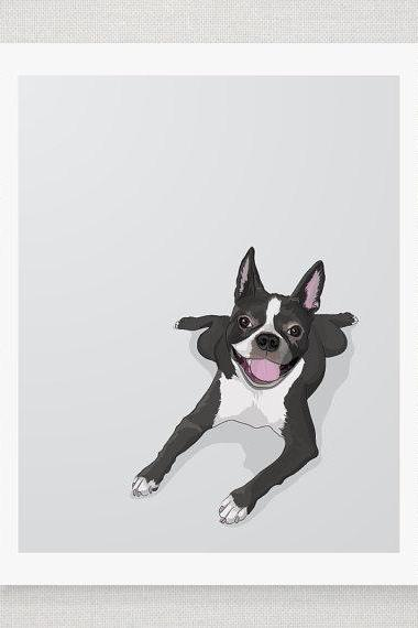 Boston Terrier - Grey Illustrated Print - 8 x 10 Archival Matte