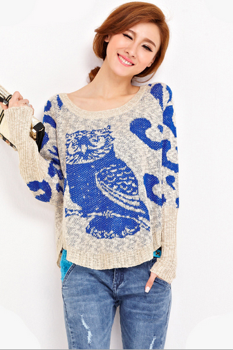 Women's new sweater bat sleeve head owlet loose knit female