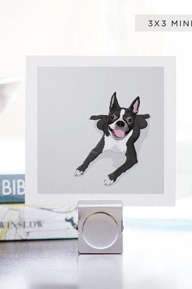 Mini Print Boston Terrier Dog Portrait - 3 x 3 Archival Matte - Digital Illustration