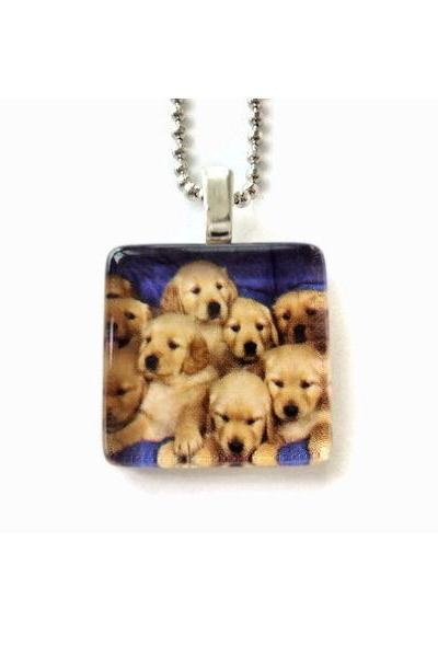 Do the Squeeze Crowded Brown Dogs Glass Tile Pendant