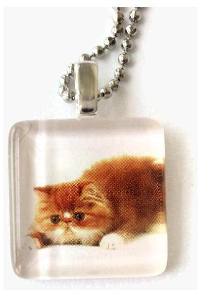 Lazy Fat Cat Square Glass Tile Pendant Necklace 7/8 inch Animals