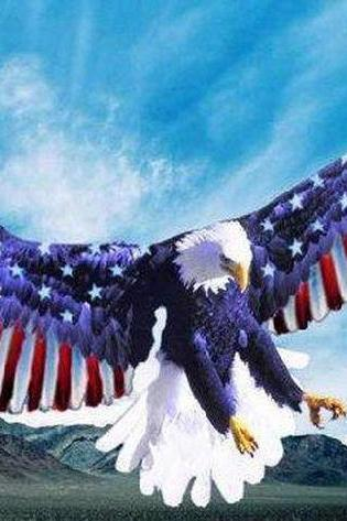 American EagLe FLag Wings Cross Stitch Pattern***L@@K***~~ I SEND WORLD-WIDE ~~FREE
