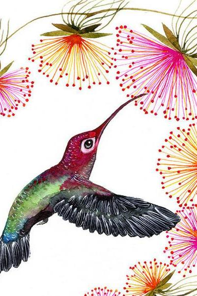 Colorful Humming Bird Cross Stitch Pattern***L@@K***~~ I SEND WORLD-WIDE ~~Free