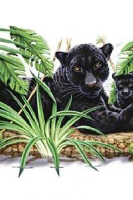 Panther & Cub Cross Stitch Pattern***L@@K***