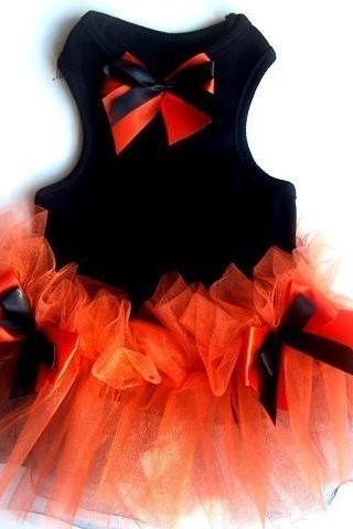 Black and Orange Halloween Pet Photo Prop Fancy Cute Dog Dress TUTU