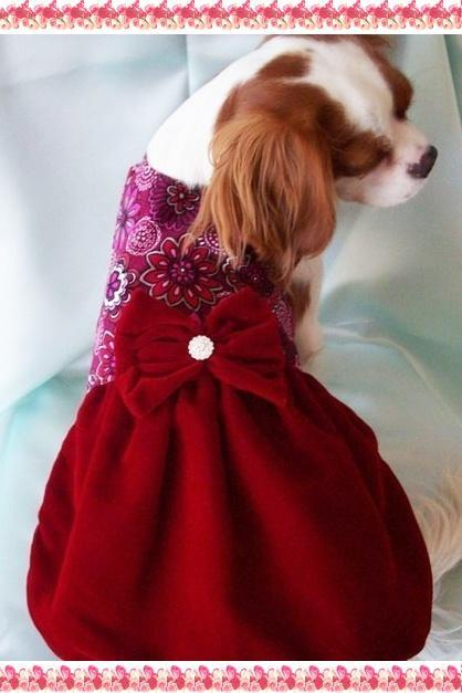 Dog Dress Christmas Dresses Red Velvet