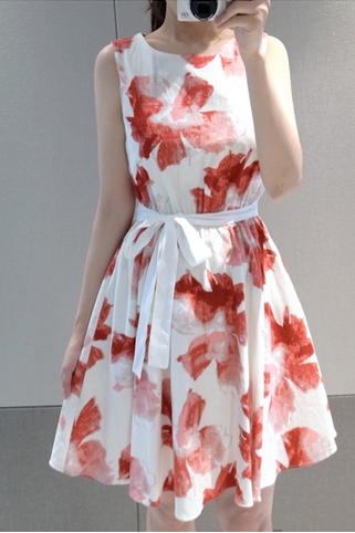 Floral Chiffon Sleeveless Printed Skirt