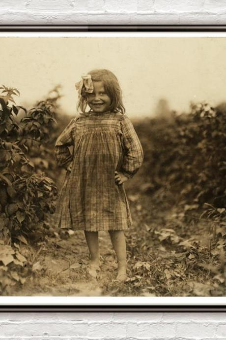 Lewis Hine, 6 year old berry picker, Rock Creek, Maryland, 1909