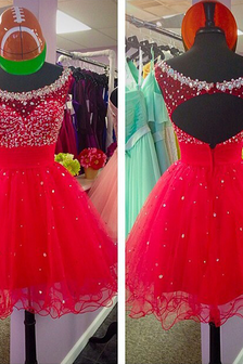 Hollow Back Prom Dress Homecoming Prom Dress Round Neck Prom Dresses Elegant Women dress,Party dress H002
