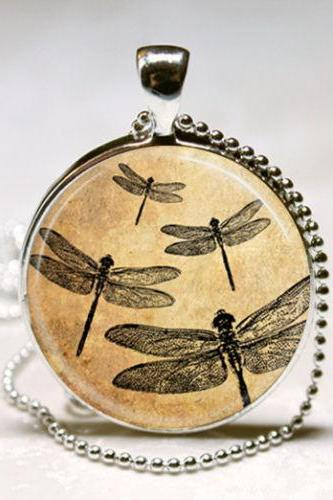 Dragonfly Necklace Bugs Dragonflies Insect Art Pendant with Ball Chain
