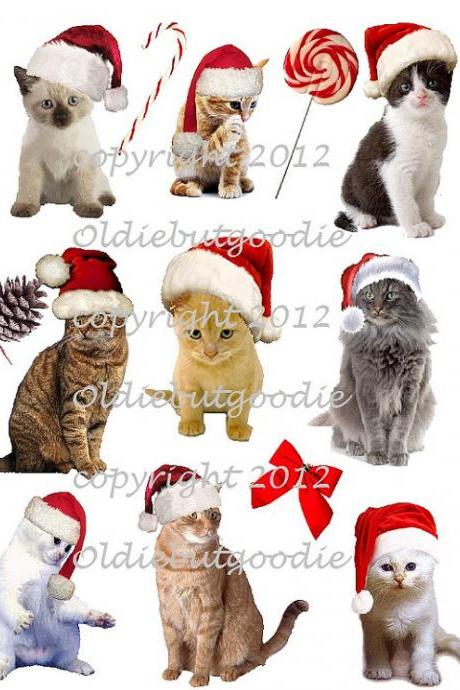 Jingle Cats Christmas 1