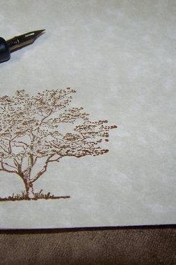 Old Oak Tree - Vintage Inspired - Parchment Stationery Set - 50 Sheets 25 Envelopes