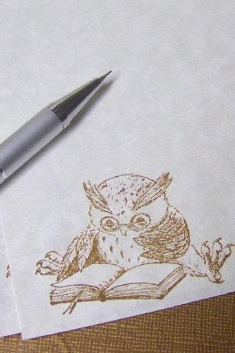 A Study in Owl - Vintage Appearance - Parchment Paper - Stationery Set - 30 Sheets - 30 Self Sealing Envelopes