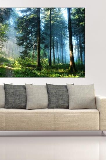 16x10 Digital printed wild spring forest Canvas to your wall, colorful morning wild wood photo (size: 16x10 inch plus border).