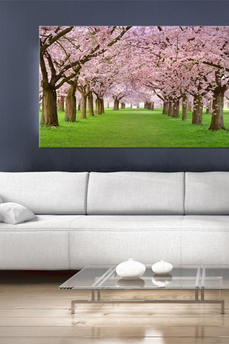 15x11 Digital printed Canvas flowering trees to your wall Flowering Japanese trees (size: 15x11 inch plus border).