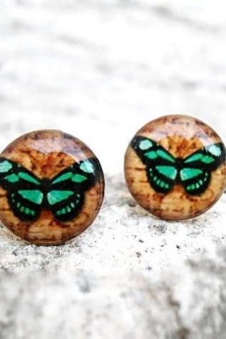 Teal Brown Butterfly earrings studs posts,Woodland Natural